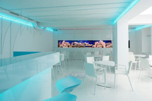 bar-aquarium_3